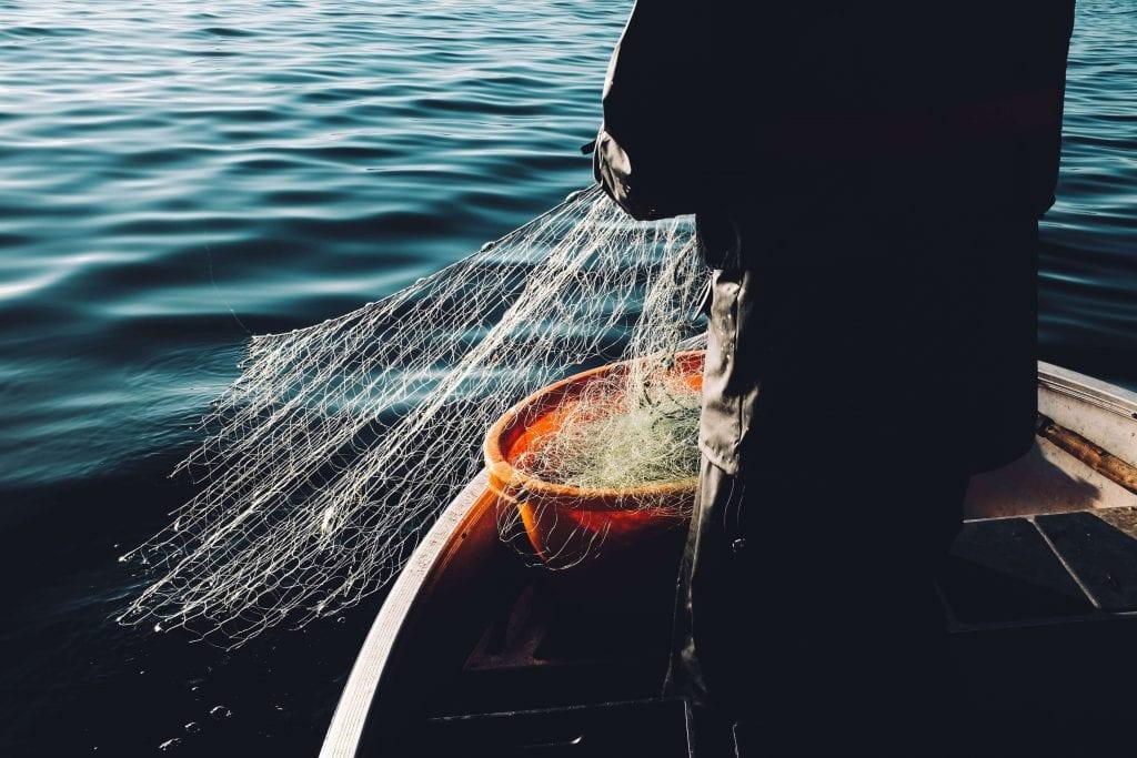 fishing for wild Alaskan salmon