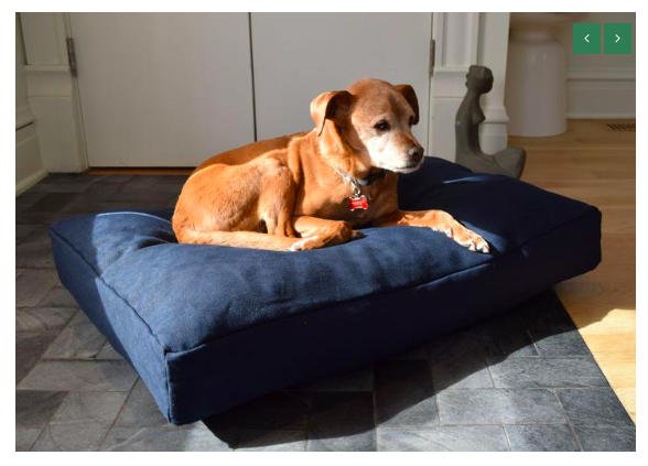 hemp pet bed and dog