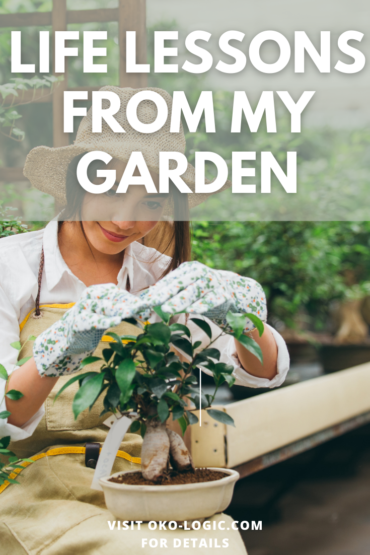 What I Love About My Healing Garden And How It Loves Me Back