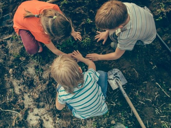 The importance of gardening for school age kids